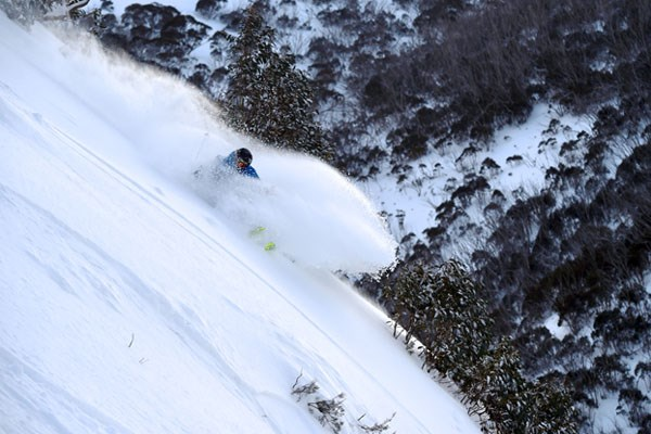 Hotham Powder Skiier