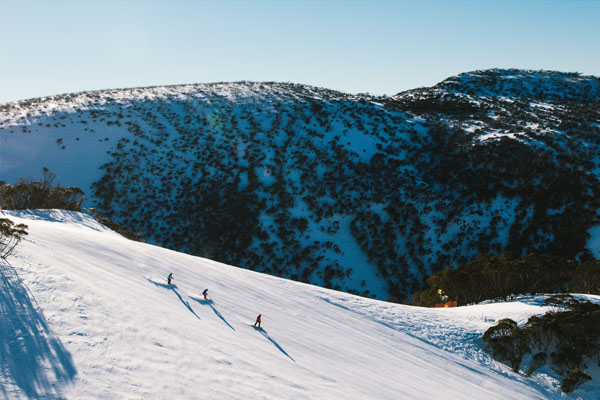 Deep steep powder line, skier Hotham season extension