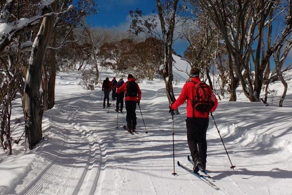 Traverse Hotham group